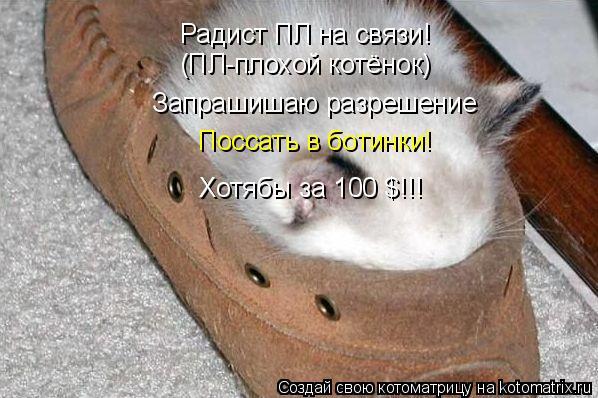Котоматрица: Радист ПЛ на связи! (ПЛ-плохой котёнок) Запрашишаю разрешение Поссать в ботинки! Хотябы за 100 $!!!