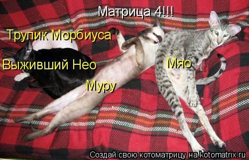 Котоматрица: Матрица 4!!! Муру Мяо Выживший Нео Трупик Морбиуса