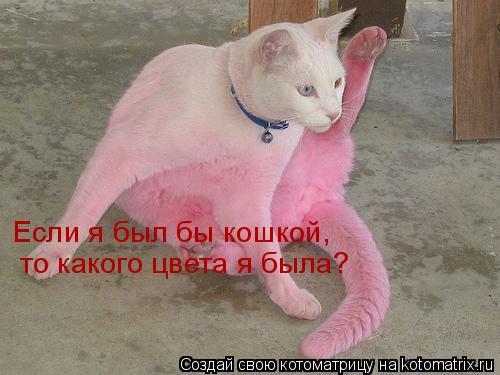 Котоматрица: Если я был бы кошкой, то какого цвета я была?