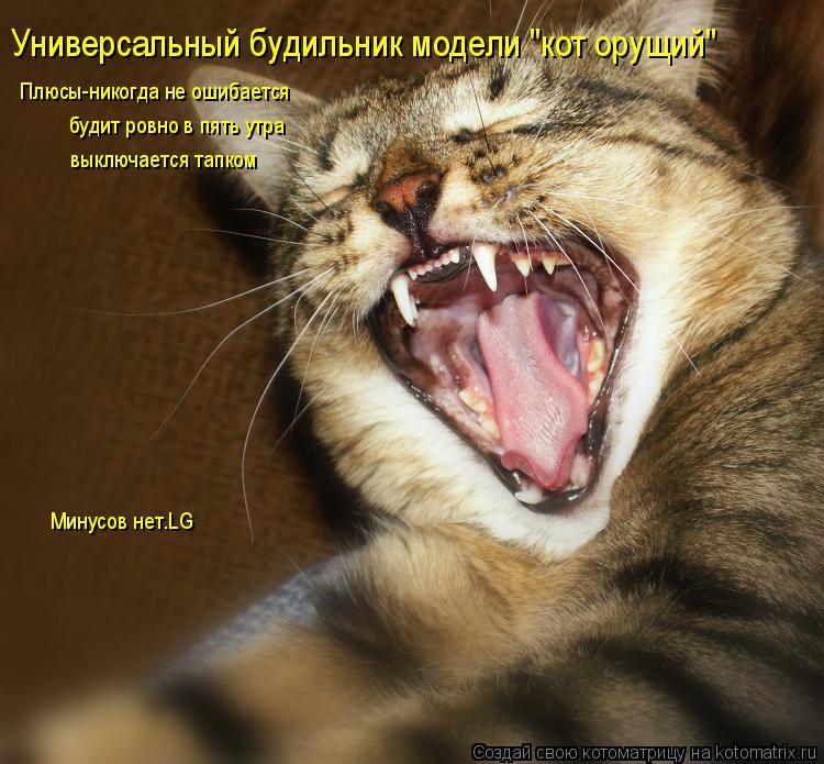 """Котоматрица: Универсальный будильник модели """"кот орущий"""" Плюсы-никогда не ошибается будит ровно в пять утра выключается тапком Минусов нет.LG"""