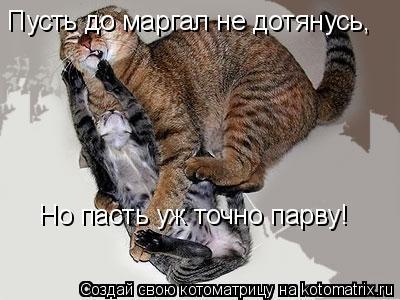 Котоматрица: Пусть до маргал не дотянусь, Но пасть уж точно парву!