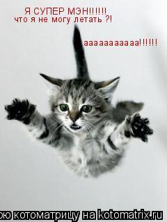Котоматрица: Я СУПЕР МЭН!!!!!! что я не могу летать ?! ааааааааааа!!!!!!