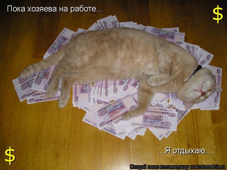Котоматрица: ...Я отдыхаю.... $ $ Пока хозяева на работе...