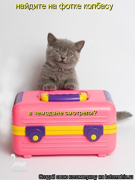 Котоматрица: найдите на фотке колбасу в чемодане смотрели?