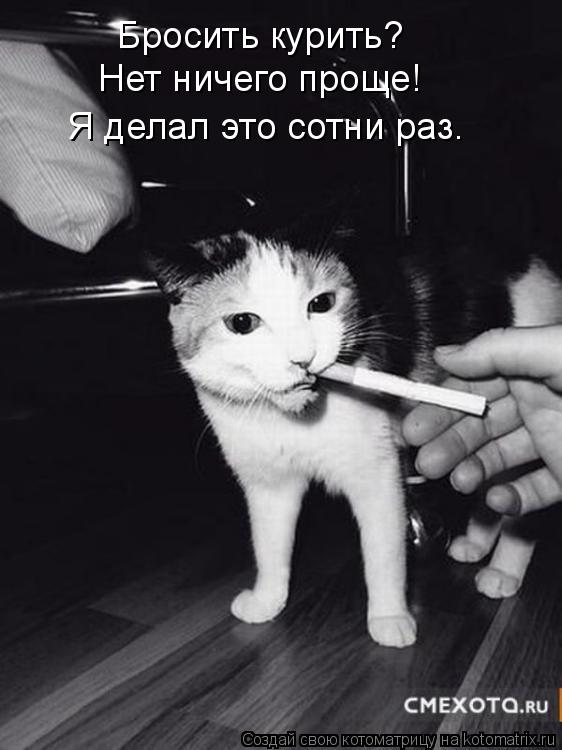 Котоматрица: Бросить курить? Нет ничего проще! Я делал это сотни раз.