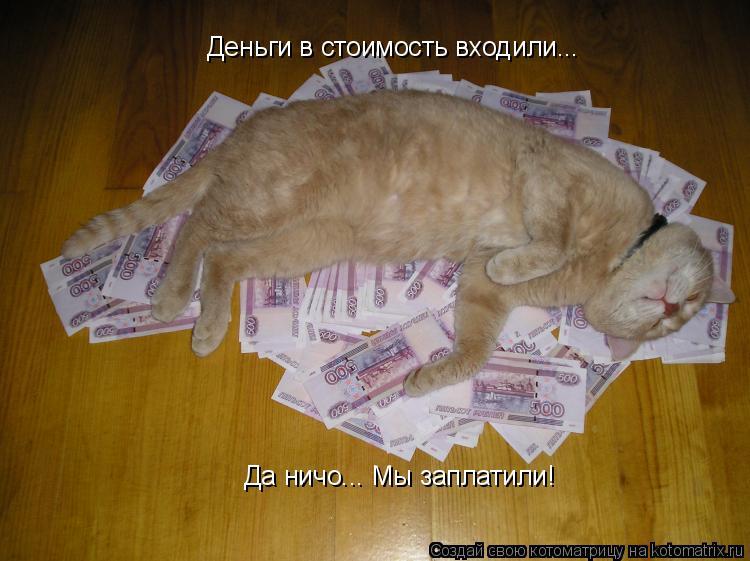 Котоматрица: Деньги в стоимость входили... Деньги в стоимость входили... Да ничо... Мы заплатили!
