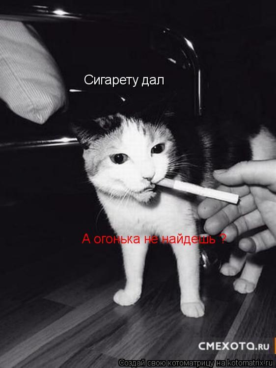 Котоматрица: Сигарету дал А огонька не найдешь ?