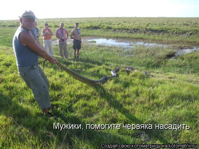 Котоматрица: Мужики, помогите червяка насадить