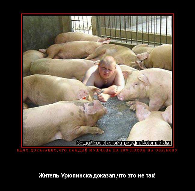 Котоматрица: Было доказанно,что каждый мужчина на 80% похож на обезьяну Житель Урюпинска доказал,что это не так!