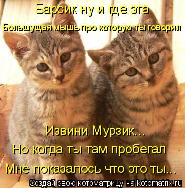 Котоматрица: Барсик ну и где эта Большущая мышь про которую ты говорил Извини Мурзик... Но когда ты там пробегал Мне показалось что это ты...