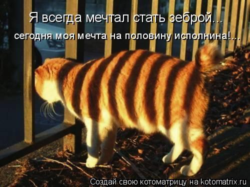 Котоматрица: Я всегда мечтал стать зеброй... сегодня моя мечта на половину исполнина!...