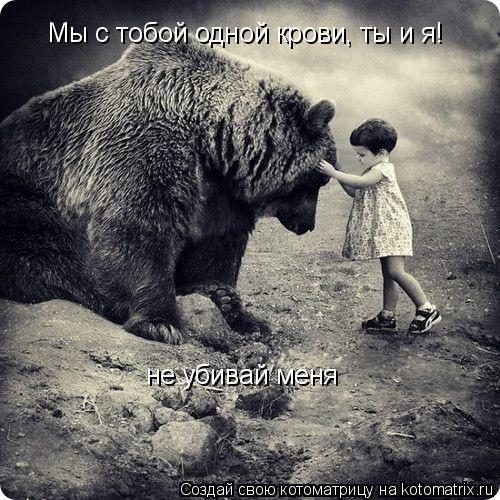 Котоматрица: Мы с тобой одной крови, ты и я! не убивай меня