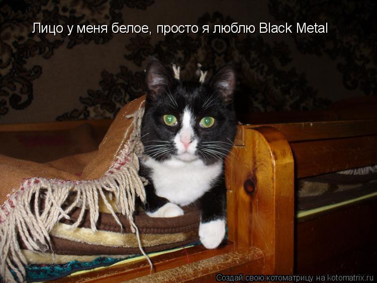 Котоматрица: Лицо у меня белое, просто я люблю Black Metal