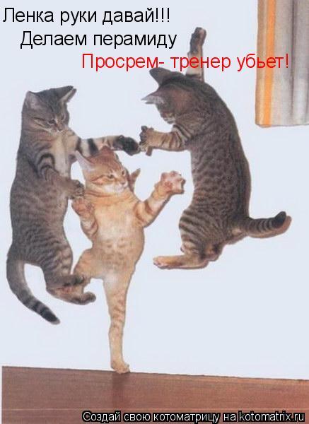 Котоматрица: Ленка руки давай!!! Делаем перамиду Просрем- тренер убьет!