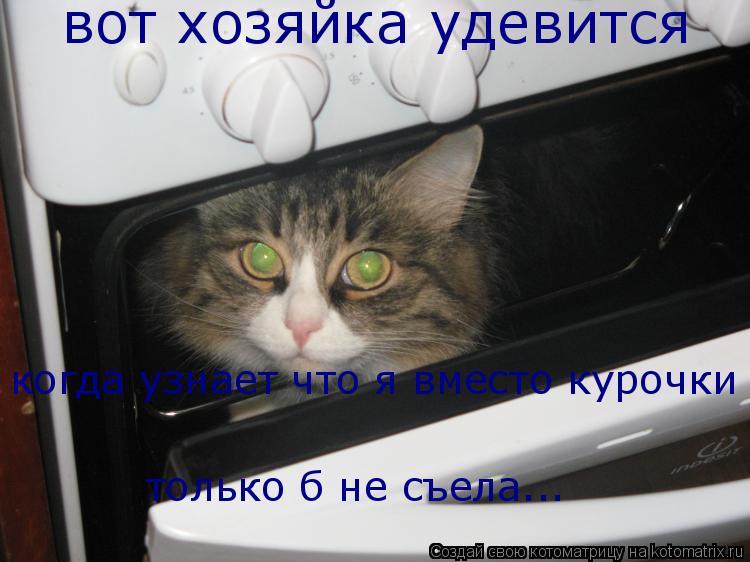 Котоматрица: вот хозяйка удевится когда узнает что я вместо курочки только б не съела...