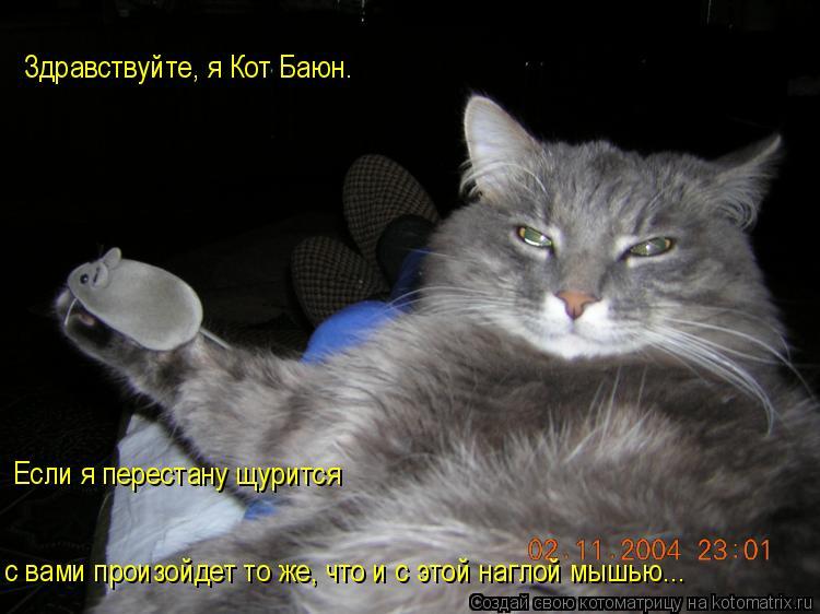 Котоматрица: Если я перестану щурится с вами произойдет то же, что и с этой наглой мышью... Здравствуйте, я Кот Баюн.
