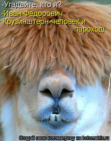 Котоматрица: -Угадайте, кто я? -Иван Фёдорович Крузинштерн-человек и  пароход!