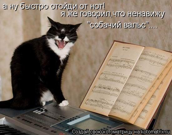 """Котоматрица: а ну быстро отойди от нот! я же говорил,что ненавижу """"собачий вальс""""...."""