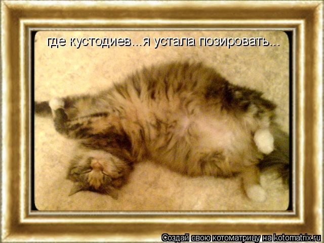 Котоматрица: где кустодиев...я устала позировать...