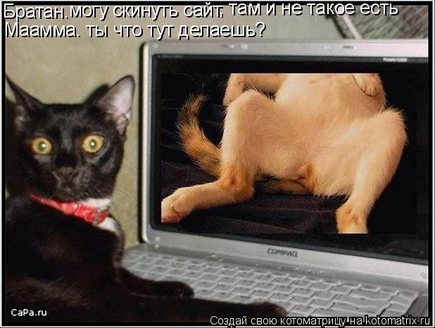 Котоматрица: Братан. могу скинуть сайт , там и не такое есть Маамма. ты что тут делаешь?