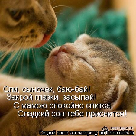 Котоматрица: Спи, сыночек, баю-бай!  Закрой глазки, засыпай!  С мамою спокойно спится, Сладкий сон тебе приснится!