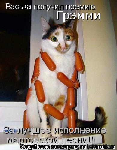 Котоматрица: Васька получил премию  За лучшее исполнение  мартовской песни!!!  «Грэмми»
