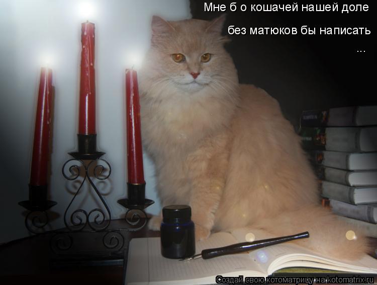 Котоматрица: Мне б о кошачей нашей доле без матюков бы написать ...