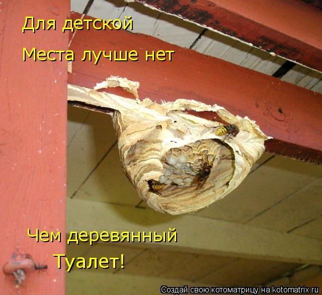 Котоматрица: Для детской Места лучше нет Чем деревянный Туалет!