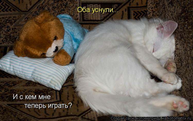 Котоматрица: Оба уснули... И с кем мне теперь играть?
