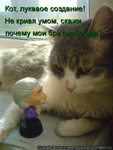 Котоматрица: Кот, лукавое создание! Не кривя умом, скажи почему мои братья богачи?