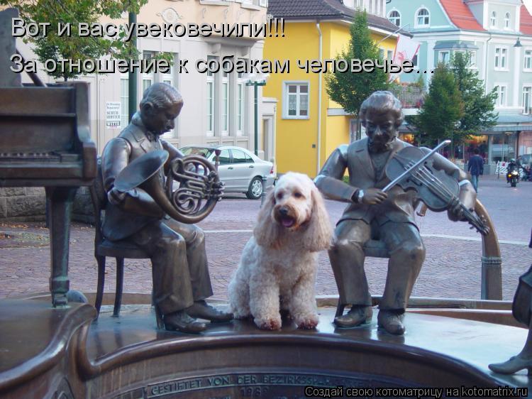 Котоматрица: Вот и вас увековечили!!! За отношение к собакам человечье...