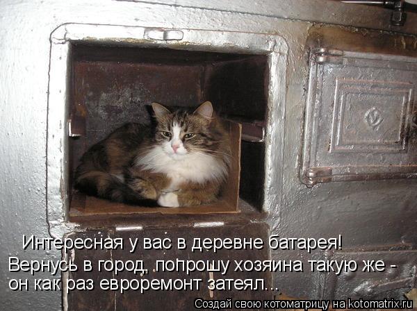 Котоматрица: Вернусь в город, попрошу хозяина такую же -  Интересная у вас в деревне батарея! он как раз евроремонт затеял...