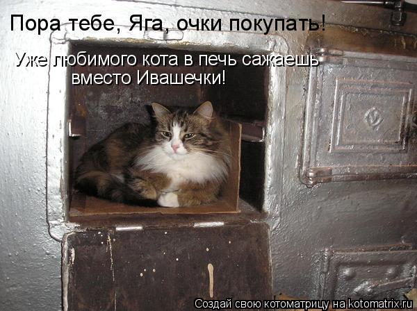 Котоматрица: Пора тебе, Яга, очки покупать! Уже любимого кота в печь сажаешь вместо Ивашечки!