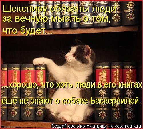 Котоматрица: Шекспиру обязаны люди за вечную мысль о том, что будет... ...хорошо, что хоть люди в его книгах ещё не знают о собаке Баскервилей.