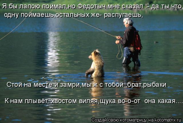 Котоматрица: Я бы лапою поймал,но Федотыч мне сказал :- да ты что, одну поймаешь,остальных же- распугаешь, Стой на месте и замри,мы ж с тобой ,брат,рыбаки . К