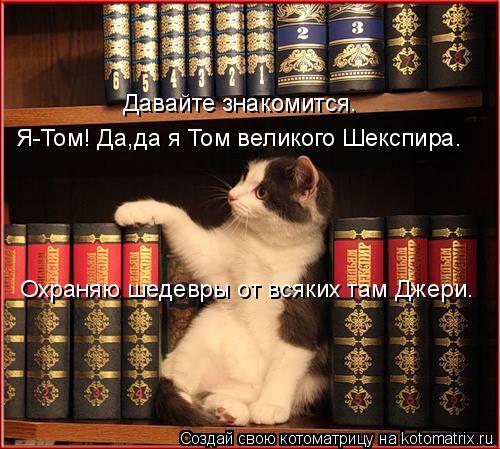 Котоматрица: Я-Том! Да,да я Том великого Шекспира. Давайте знакомится. Охраняю шедевры от всяких там Джери.