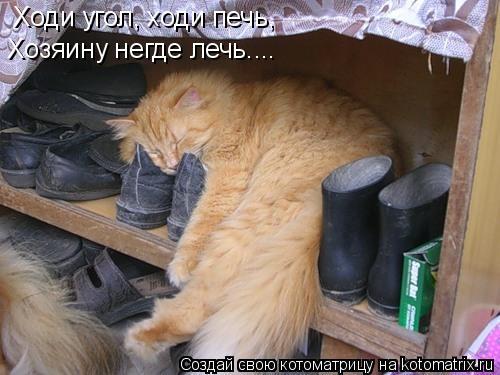 Котоматрица: Ходи угол, ходи печь, Хозяину негде лечь....