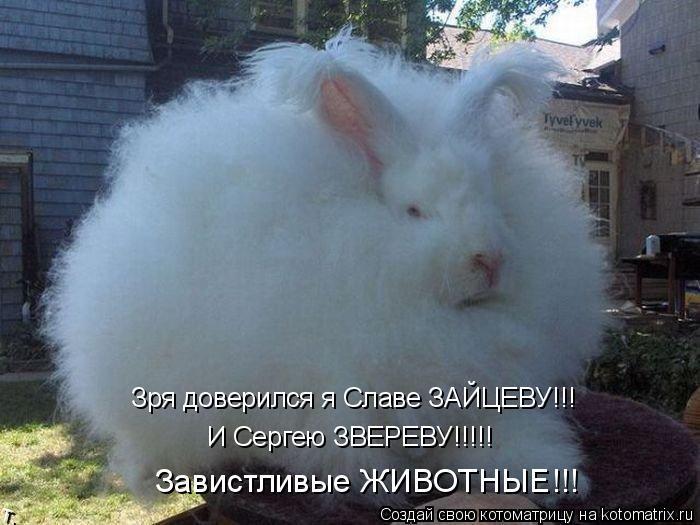 Котоматрица: Зря доверился я Славе ЗАЙЦЕВУ!!!  И Сергею ЗВЕРЕВУ!!!!! Завистливые ЖИВОТНЫЕ!!!