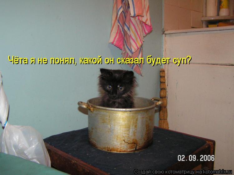 Котоматрица: Чёта я не понял, какой он сказал будет суп?