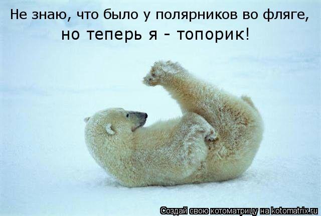 Котоматрица: Не знаю, что было у полярников во фляге,  но теперь я - топорик!