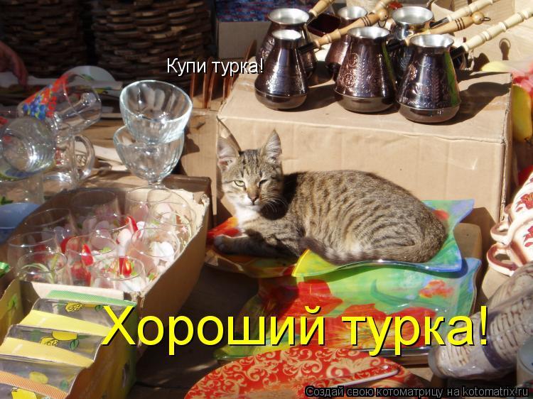 Котоматрица: Купи турка! Хороший турка!