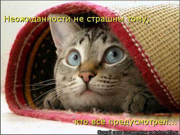 Котоматрица: Неожиданности не страшны тому, кто всё предусмотрел...