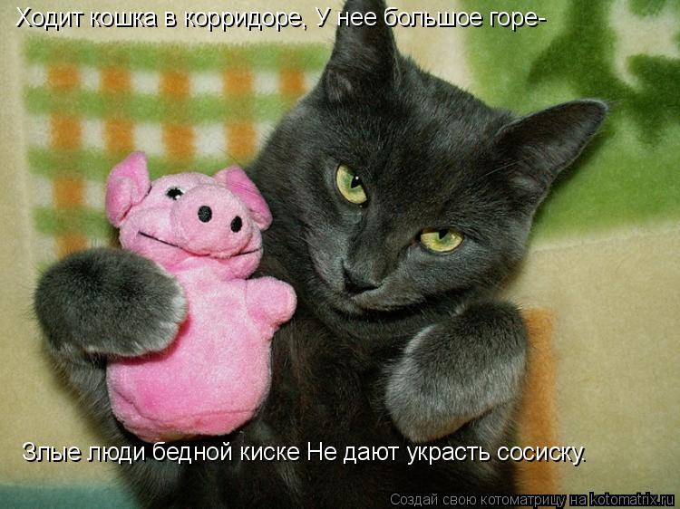 Котоматрица: Ходит кошка в корридоре, У нее большое горе-  Злые люди бедной киске Hе дают украсть сосиску.