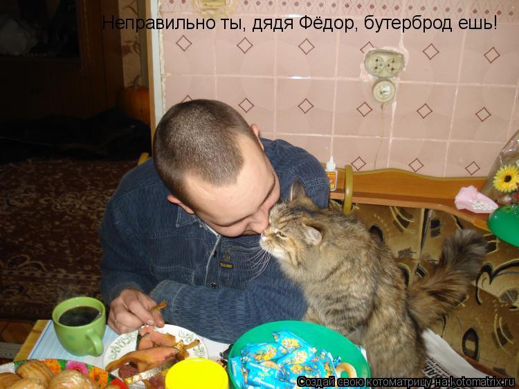 Котоматрица: Неправильно ты, дядя Фёдор, бутерброд ешь!
