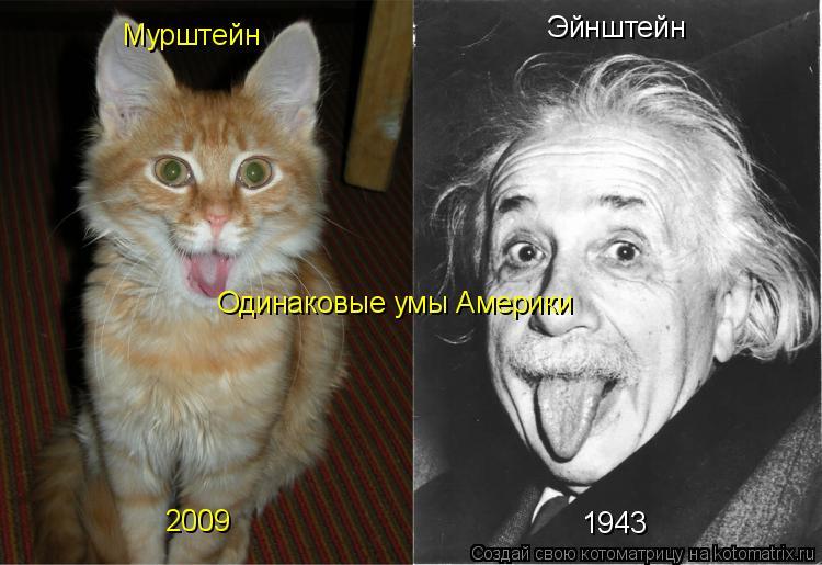 Котоматрица: Мурштейн Эйнштейн 1943 2009 Одинаковые умы Америки