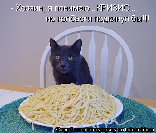 Котоматрица: - Хозяин, я понимаю...КРИЗИС...  но колбаски подкинул бы!!!