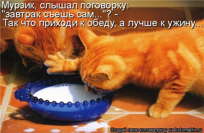 Мурзик, слышал поговорку: