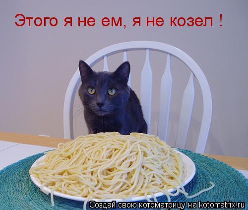 Котоматрица: Этого я не ем, я не козел !
