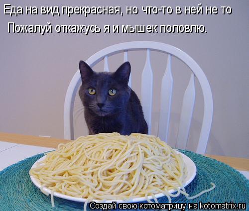 Котоматрица: Еда на вид прекрасная, но что-то в ней не то Пожалуй откажусь я и мышек половлю.