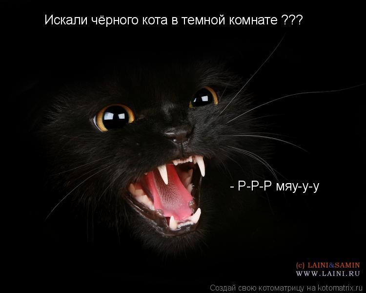 Котоматрица: Искали чёрного кота в темной комнате ???  - Р-Р-Р мяу-у-у